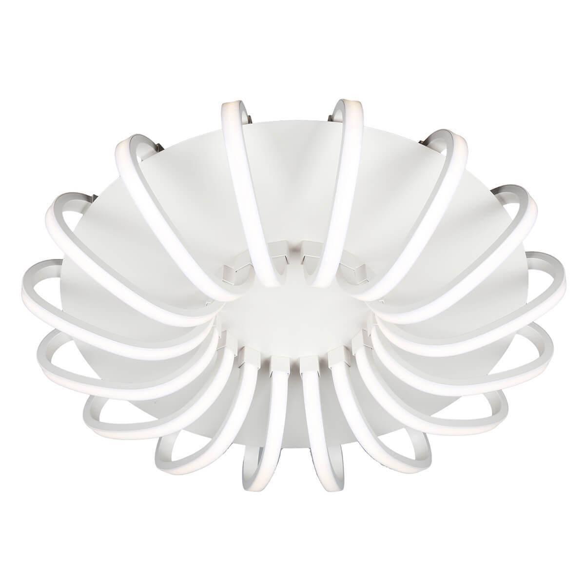 Потолочная светодиодная люстра Omnilux OML-48107-112