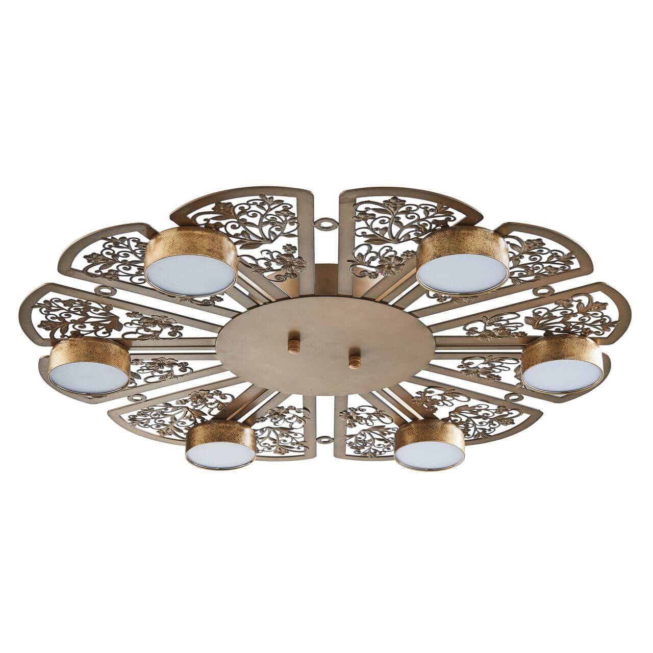 Потолочная светодиодная люстра Favourite Ornamentum 2604-6C